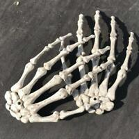 Halloween Skull Skeleton Human Hand Bone Zombie Party Terror Adult Scary Props !