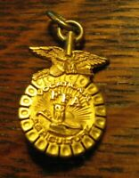 FFA Vintage Lapel Pin - 1973 Future Farmers Of America Vocational Agriculture