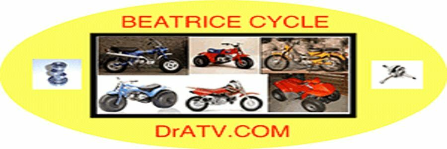 BEATRICE CYCLE INC