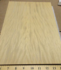 "Avodire figured wood veneer panel 3/4"" x 9"" x 11"" MDF and Okuome wood backing"