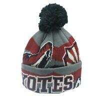 Arizona Coyotes NHL Reebok Youth Boys (8-20) Cuffed Pom Knit Winter Beanie New