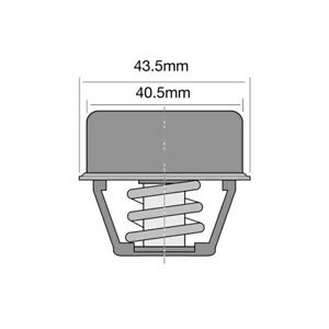 THERMOSTAT FOR RENAULT 16 1.6 TX 115 (1974-1980)