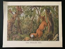 "Vintage ""The Puzzled Fox"" Print by Currier & Ives"