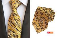 Giallo Marrone Argento Cravatta Fazzoletto da Taschino Set con Motivo