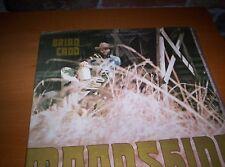 "BRIAN CADD      ""MOONSHINE   GATEFOLD     LP    1974"