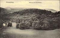 Schwarzburg Thüringen alte AK ~1910 Blick auf Hirschwiese Verlag Jahn ungelaufen