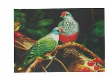 bird pigeon photography 3D Lenticular Holographic Stereoscopic Picture Wall Art