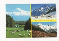 Mount Cook Postcard New Zealand 556a