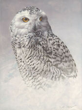 """""""White Out"""" Andrew Denman Fine Art Giclee Canvas"""