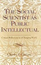 The Social Scientist As Public Intellectual: Critical Reflections In A Changi...