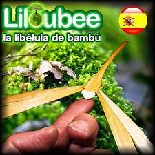 ES 100 Libélulas Bambú Flotantes Mágicas Vietnam Liloubee