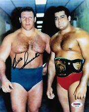 BRUNO SAMMARTINO WWF WWE LEGEND SIGNED AUTOGRAPH 8X10 PHOTO #2 PSA/DNA COA