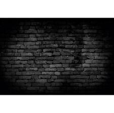 Projection Brick Wall Photo Photography Backdrops Background Studio Props Retro