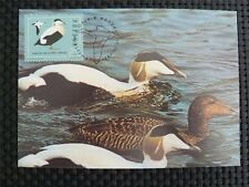 POLEN MK VÖGEL ENTEN BIRDS DUCKS MAXIMUMKARTE CARTE MAXIMUM CARD MC CM c1325