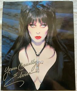 Vintage 1998 ELVIRA Signed Photo Yours Cruelly 10 x 8 Color