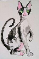 Cornish Rex black tuxedo cat art,original watercolor painting cat lover bestgift