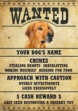 Rhodesian Ridgeback Wanted Personalized Magnet With Your Dog's Name