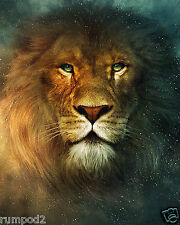 Lion Poster/Print/King of the Jungle/Wild Animal/Jungle animal/16x20 inch