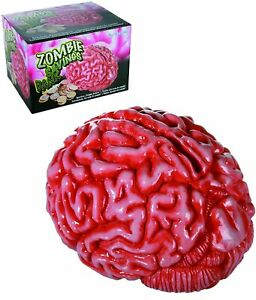Grand 18cm Zombie Brain Tirelire Banque Cadeau Nouveauté Économies Céramique