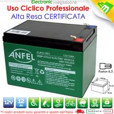 Batteria Ricaricabile Piombo 12V Volt 12Ah per bici elettriche 14Ah CICLICA