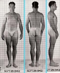 THICK HOT BEEFCAKE ~1940s 5x7 NAVY ID PHOTO NEAR NUDE JOCK SAILOR MAN gay #206