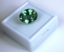 24.65 Ct Natural Oval IGL Certified Vs Clarity Green Sapphire Gemstone Best Deal