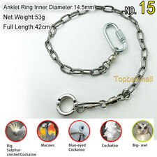 Stainless Steel Parrot Foot Chain Birds Anklet Ring leads for Pet Training