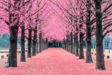 BEAUTIFUL PARK BLOSSOM CANVAS PICTURE #46 STUNNING LANDSCAPE DECOR A1 CANVAS