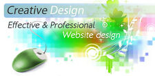 Custom Made Professional Website Design with Content Optimization
