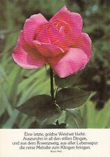 Eine Rose mit Spruch ngl D9691