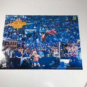 "SHAWN MICHAELS & RIC FLAIR poster WWE Magazine WrestleMania XXIV 2008 16x21"""