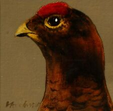 RED GROUSE : ORIGINAL OIL PAINTING : Shooting Game Bird Art by David Andrews