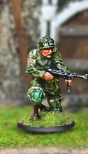 The Collectors Showcase Ww2 American Cba031 101St Airborne Sergeant Tapfer Mip