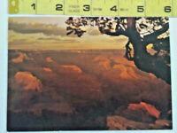 Old Vintage Postcard Arizona AZ Grand Canyon National Park Hopi Point