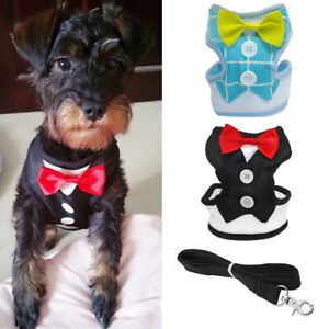 Dog Control Harness Mesh Dog Cat Walking Collar Safety Strap Bow Tie with Lead