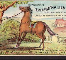 Antique 1800's Eclipse Horse Halter J.C. Lighthouse Rochester NY Farm Trade Card