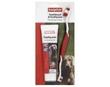 Beaphar Toothbrush & Toothpaste Set