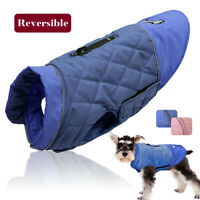 Dog Waterproof Winter Coat with Harness Hole Small Medium Pet Clothes Jacket Pug