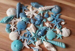 18 Edible Sugar Mermaid Seashells. Cake Decorations Topper. Seashells