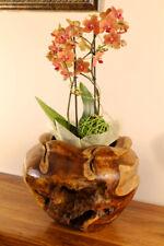 Planter Teak Wood Root Wood Teakwood Flowerpot Flowers Pot Planter Round