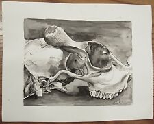 Striking signed detailed ink wash drawing of a cow? skull black/white 11x14