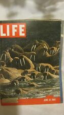 Life Magazine June 27th 1960 Alaskan Walrus Rocky Shore Published By Time mg680