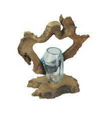 Framed Molten Glass Decorative Bowl / Succulent Terrarium On Natural Gamal Root
