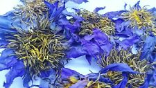 1oz Dried Blue Lotus Nymphaea Caerulea Flowers Herbal Tea Fresh Organic