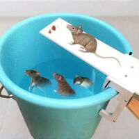 Walk The Plank Mouse Cage Mice Trap Rat Trap Auto Reset Rodent Bucket Board