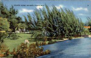Vintage Postcard Bayamon Puerto Rico 1930s