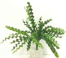 "Ripple Fern Bush~Green~18"" T~PVC/Artificial"