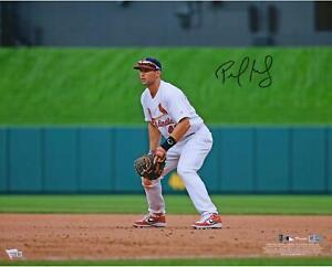 """Paul Goldschmidt St. Louis Cardinals Autographed 16"""" x 20"""" Fielding Photograph"""