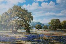 """Beautiful Bluebonnet Lane 24"""" x 36"""" beautiful Cynthia Bryant Print 10,000+ sold"""