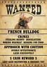 "FRENCH BULLDOG FRENCHIE Wanted Poster Fridge Dog Magnet LARGE 3.5"" X 5"" #2"